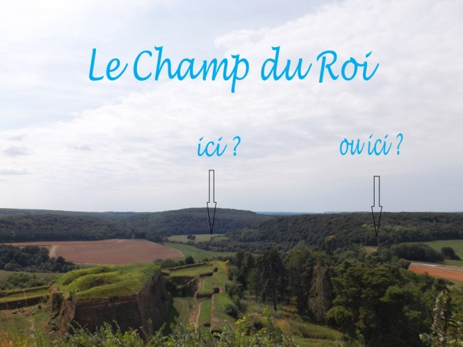 champ du roi - Copie