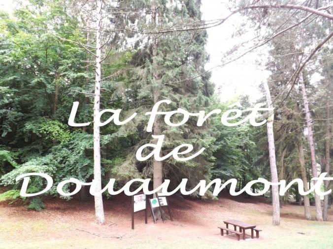 la forêt de Douaumont