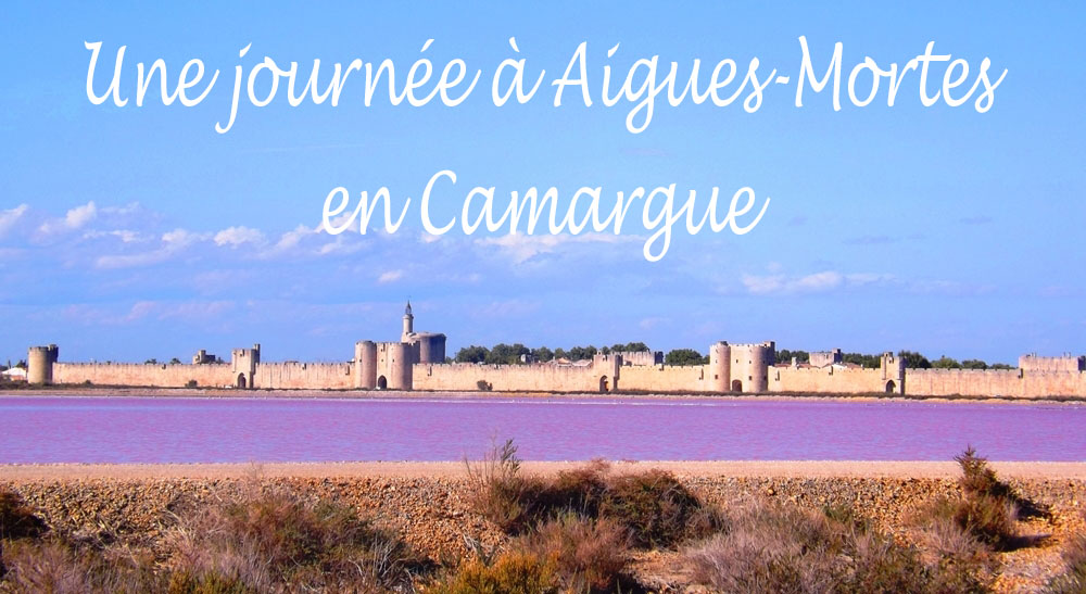 Une journée inoubliable en Camargue    Aigues-Mortes et visite du ... 0546f10072d