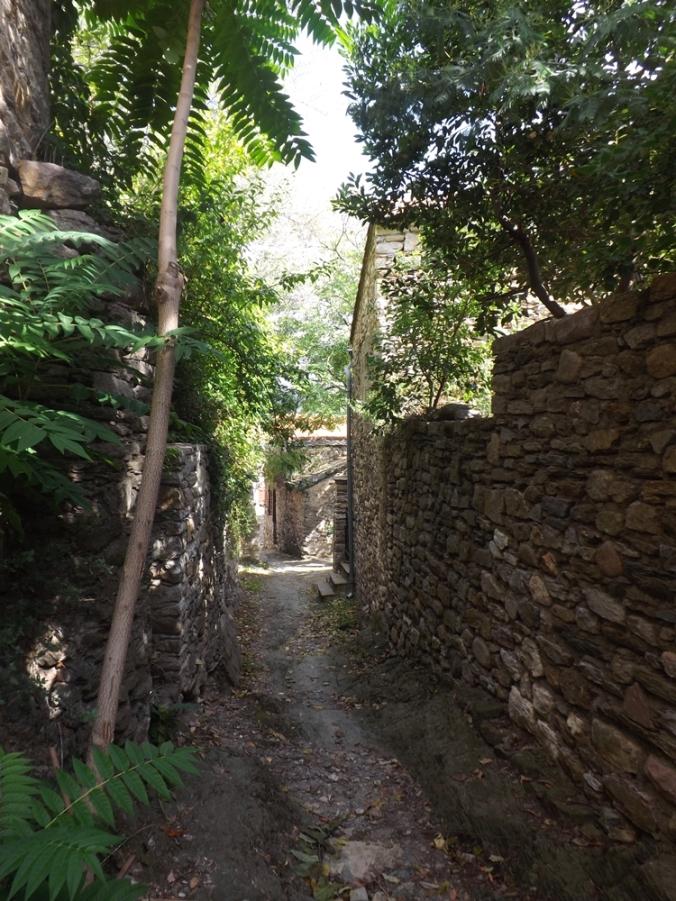 vieille rue en pierres