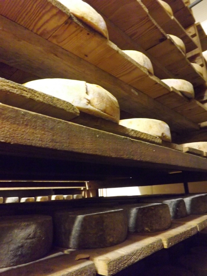 fromages 2
