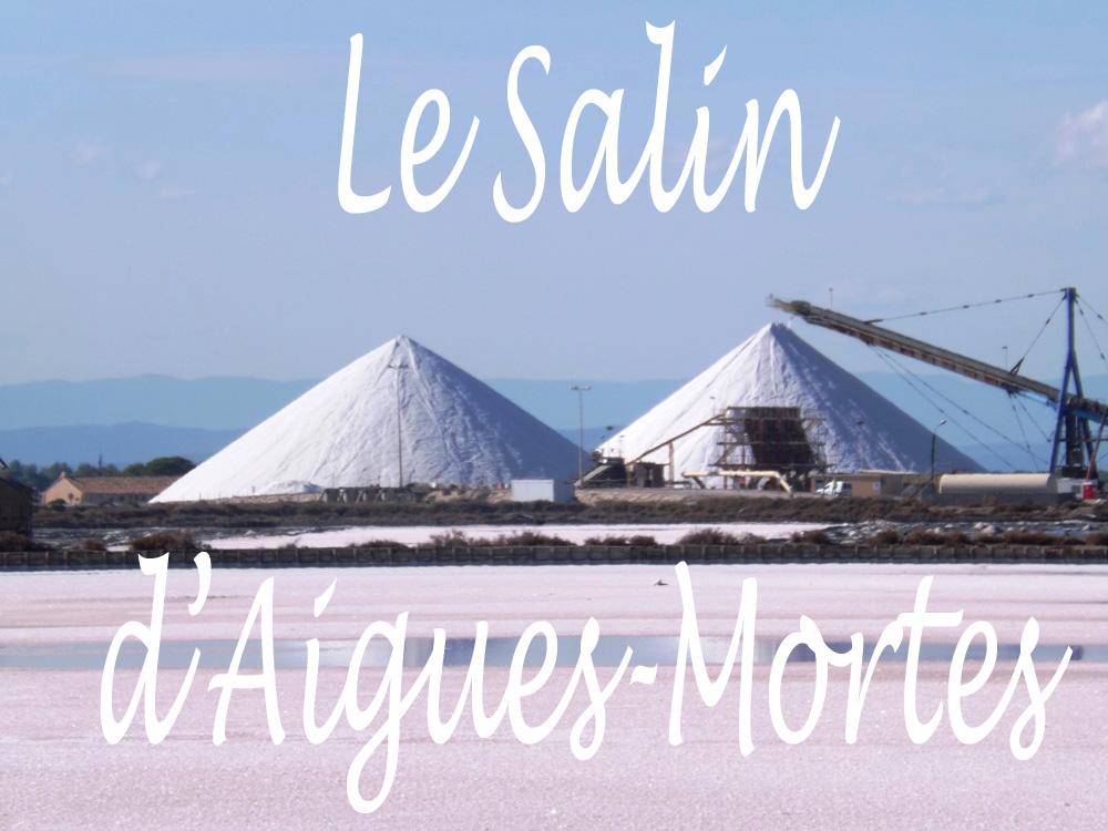 Suite de notre journée inoubliable en Camargues ! Après la visite de la  cité royale d Aigues-Mortes, place à la visite en petit train de  l incroyable salin. 73cf10bd49d