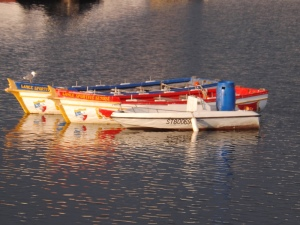 bateaux des joutes sete