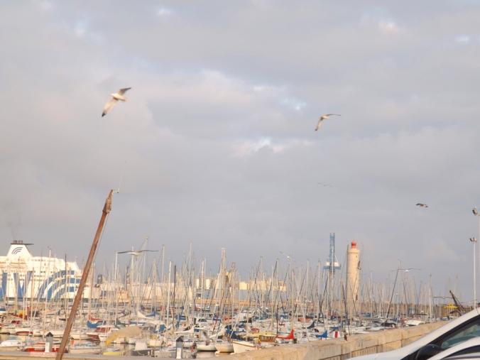 bateaux mouettes et phare mole st louis sete