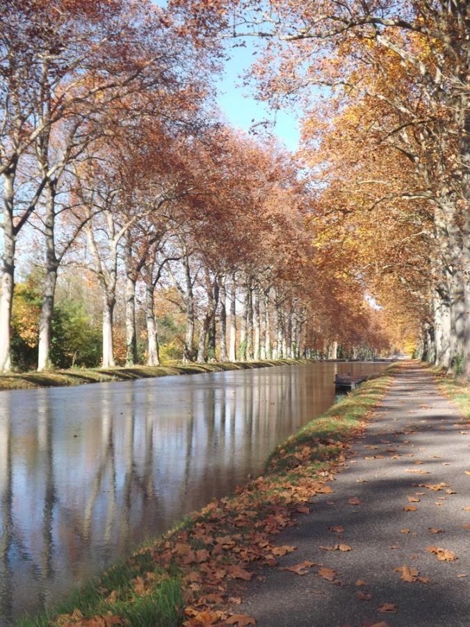 canal de Garonne à Montech