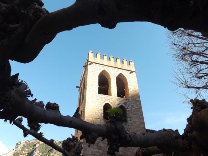 clocher entre les branches d'un platane a villefranche de conflent