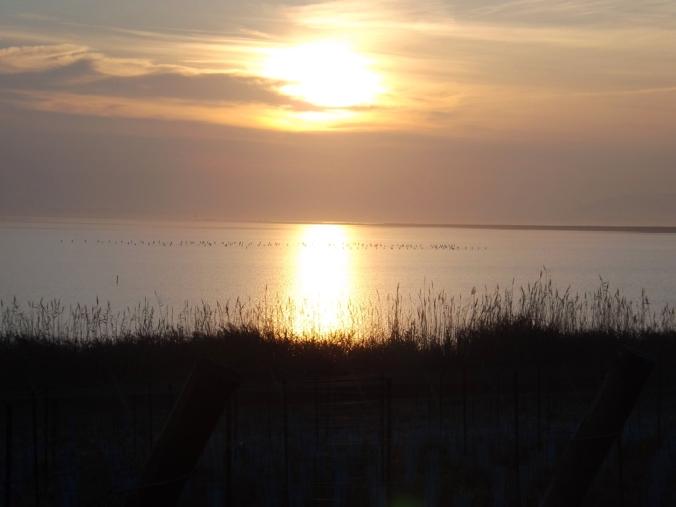 coucher de soleil sur etangs de Maguelonne