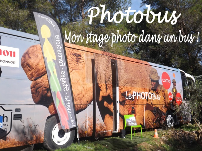 photobus - Copie