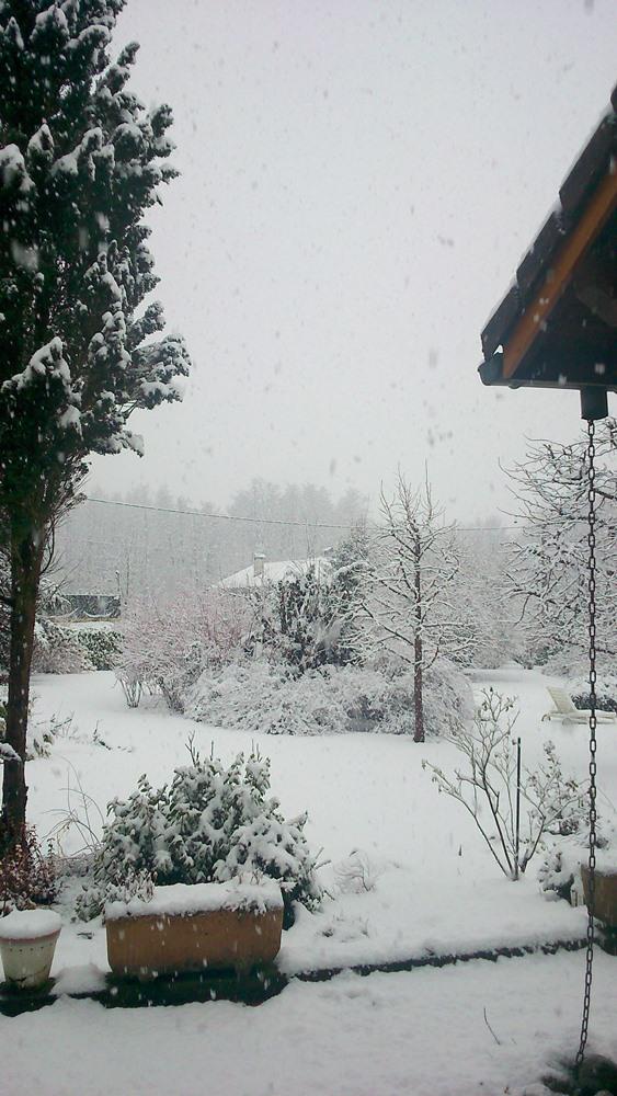 la neige qui tombe sur le jardin