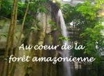 cascade mtp foret amazonienne