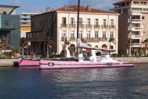 catamaran rose a sete