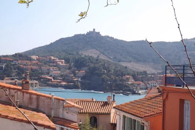 Collioure vue sur le fort st elme