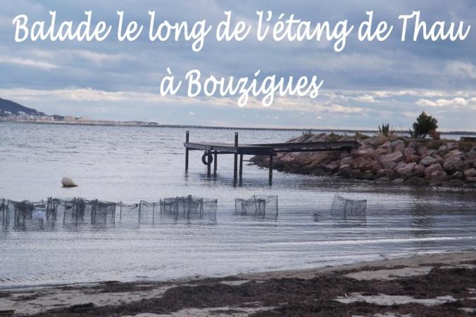 petit ponton de bois sur l'etang de Thau a Bouzigues