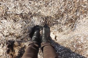 pieds dans les algues séchées au bord de l'etang de Thau a Bouzigues