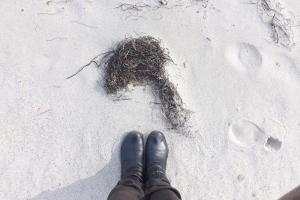 pieds sur le sable blanc etang de Thau Bouzigues