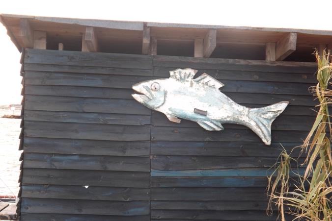 poisson baraque en bois ponton du port de Bouzigues