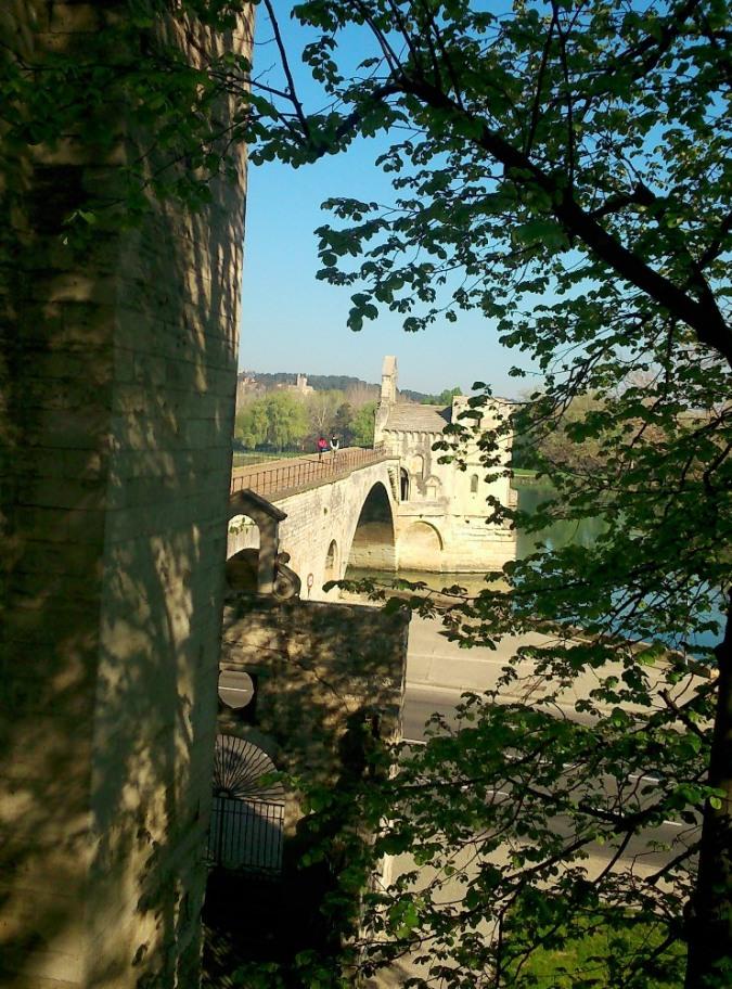 pont d'Avignon vu depuis la rive