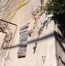 volet facade maison quartier moure de collioure