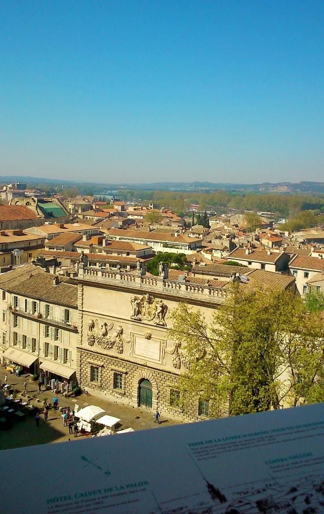 vue sur avignon et le rhone depuis les terrasses du palais des papes avignon