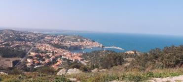 vue sur Collioure depuis le Fort St Elme