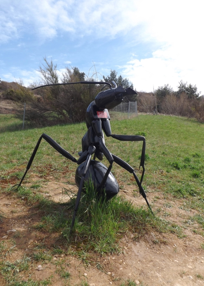 fausse fourmi micropolis