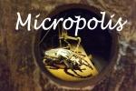 Goliath micropolis - Copie