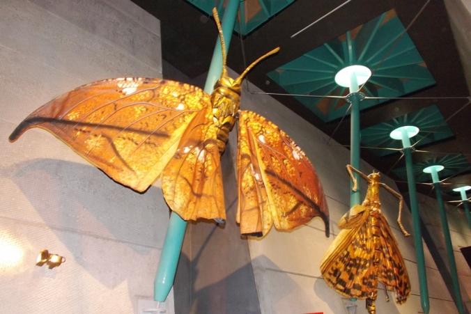 papillons geants micropolis