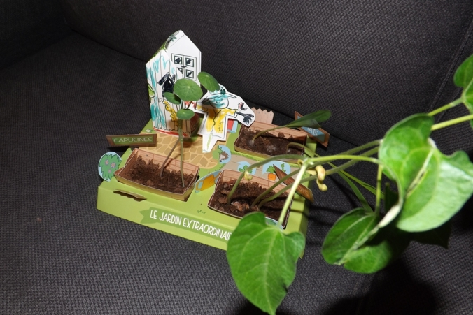 jardin pandacraft