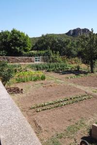 jardin vailhan