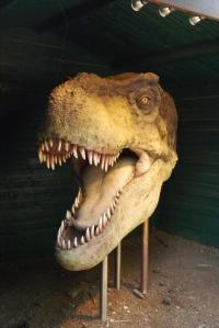 tete de dinosaure parc meze