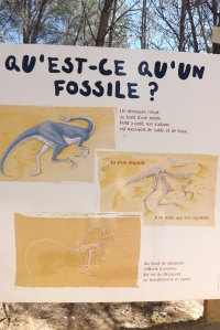 panneau expli fossiles meze