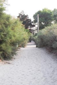 chemin de plage