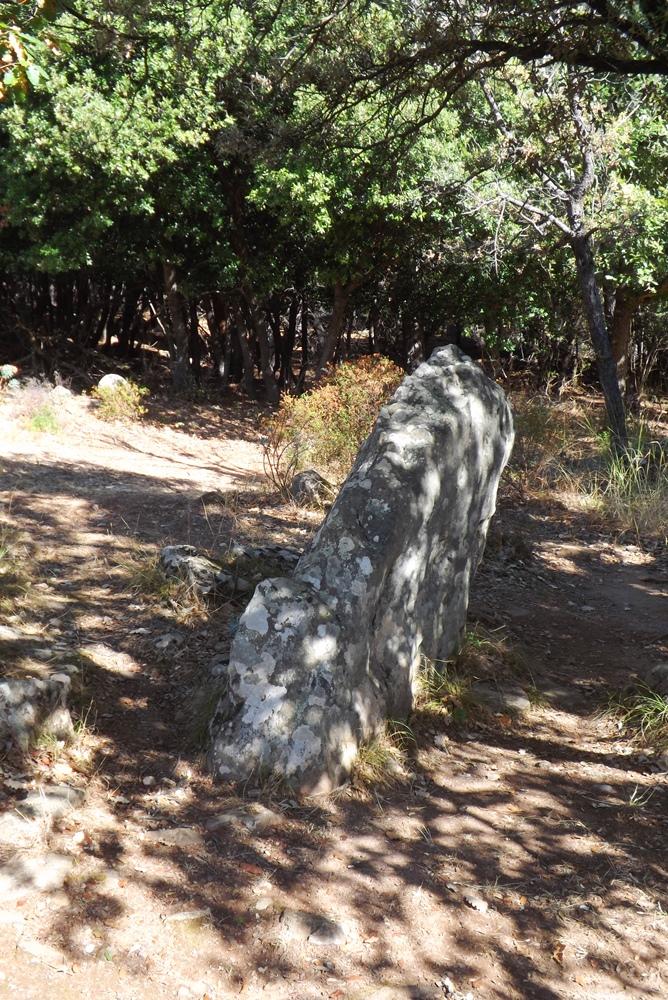 petit-menhir-prieure-st-michel
