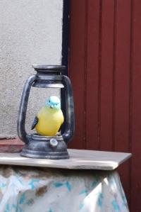 petit-oiseau-lampe