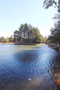 prieure-le-lac-bassin