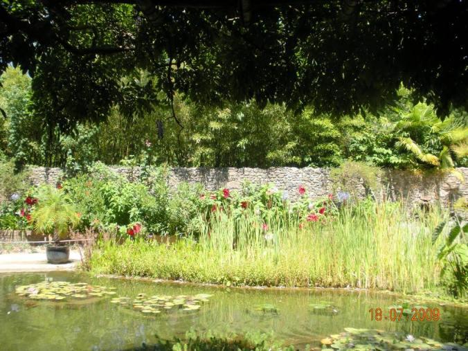bassin-bambouseraie