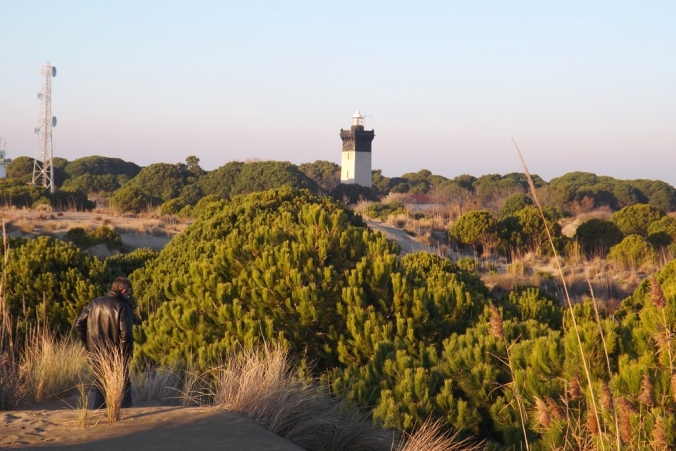 phare-espiguette-perdu-au-milieu-des-dunes
