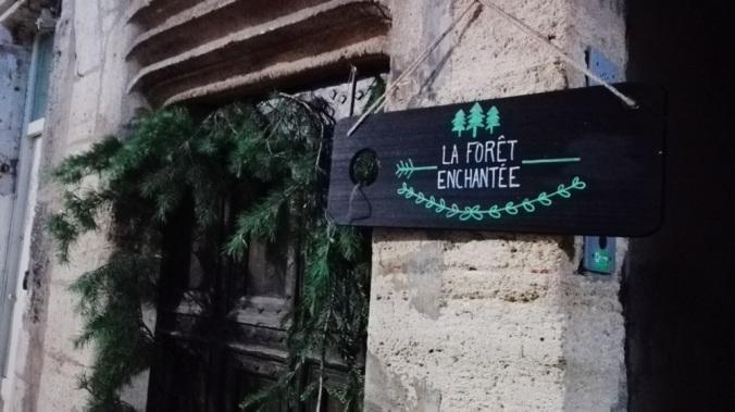 foret-enchantee-4